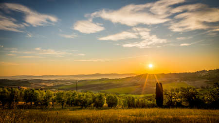 montepulciano: Hills of Tuscany  with olive field in the foreground Stock Photo