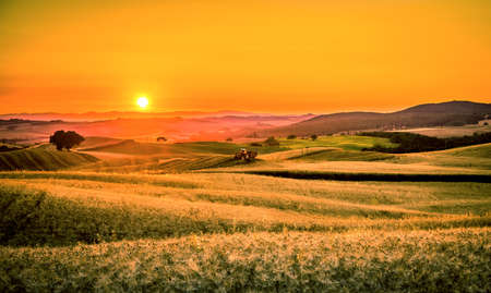Golden sunset over tuscan fields in Italy with a tractor in the foreground