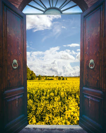 Old open door and landscape of yellow rapeseed field