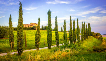 uphill: Tuscan landscape with uphill road and cypress trees Stock Photo