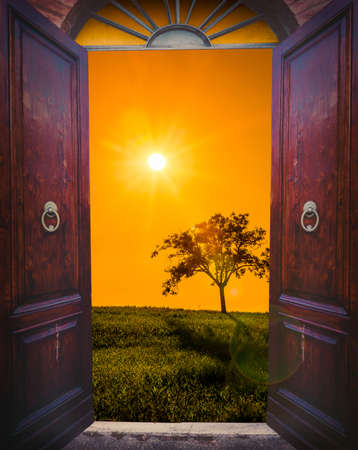 view of a wooden doorway: Old open door and sunset landscape with lonely tree