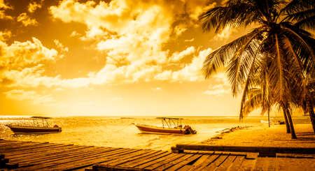 motor boats: Beautiful golden caribbean beach, motor boats and wooden jetty