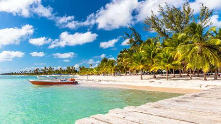 island: Beautiful caribbean beach on Saona island, Dominican Republic Stock Photo