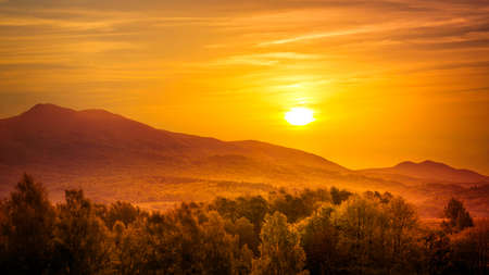 morning sun: Golden sunrise over european mountains and forest