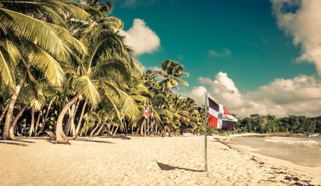 caribbean beach: Caribbean beach and Dominican Republic flag on Saona island Stock Photo