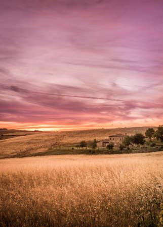 purple sunset: Purple sunset in Tuscany. Countryside landscape.