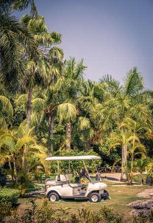 mayan riviera: Club cart among palm trees on mayan riviera in Playa del Carmen