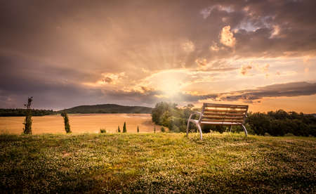 tree landscape: Beautiful sunset landscape with lonely bench in the foreground