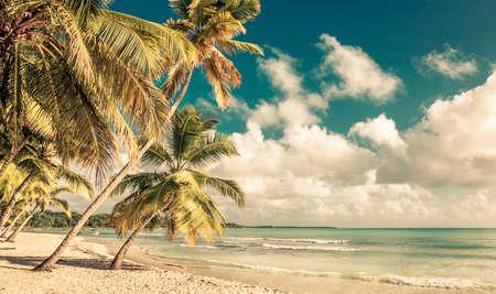 도미니카 공화국에 아름 다운 카리브 beachand 바다