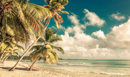 Beautiful caribbean beachand sea in Dominican Republic