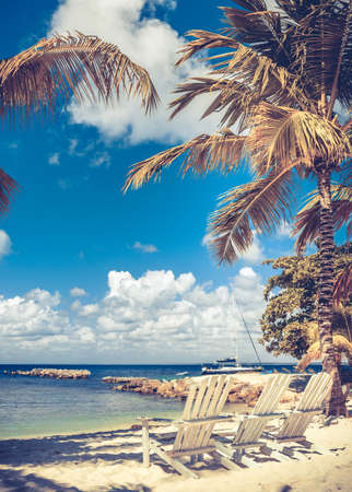 cana: Beautiful caribbean beach on Saona island, Dominican Republic Stock Photo