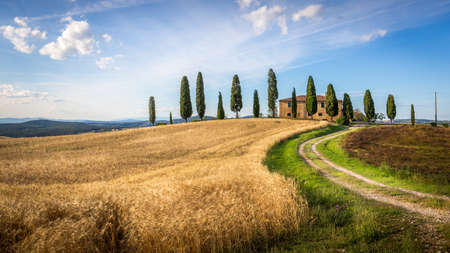 Tuscan landscape with farmhouse and cypress trees