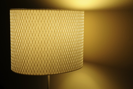Modern Decorative Lamp  photo