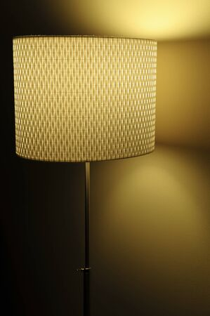 Modern Decorative Floor Lamp  Stock Photo - 10309157