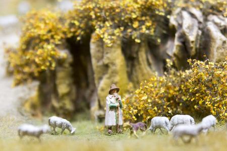 herdsman: Shepherd And Sheeps
