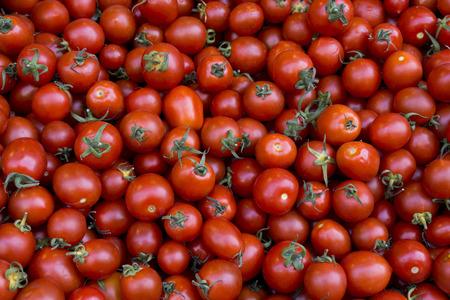 domates: Cherry Tomatoes Stock Photo