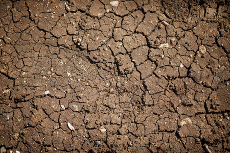 cracked: Cracked Soil Stock Photo