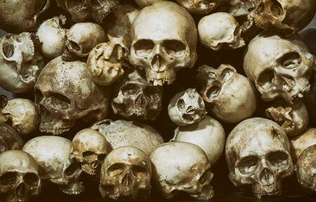 Close Up Shot Of Stacked Skulls