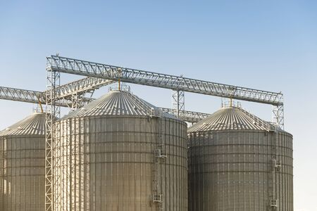 agricultural, agriculture, architecture, blue, blue sky, building, business, container, corn, factory, farm, farming, food, grain, grain silos, harvest, industrial, industry, metal, no people, nobody, plant, processing, silo, silver, sky, steel, storage, store, structure, tank, tower, warehouse, wheat, work
