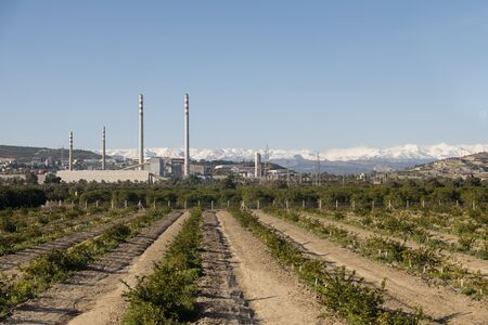 Empty Plantation And Industrial Plant At Background From Tarsus, Mersin, Turkey Stock Photo