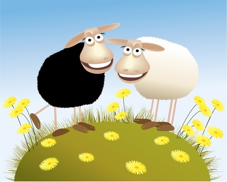Black and white sheep Stock Vector - 14020199
