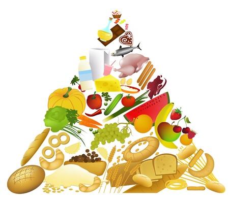 Food Pyramid  Çizim