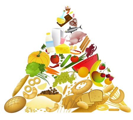 Food Pyramid  Stock Vector - 14093983
