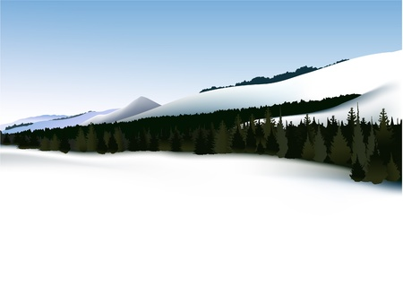 ski resort: Winter mountains with forest