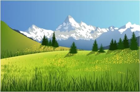 Paysage de montagne Banque d'images - 14477245