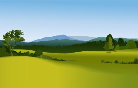 the countryside: Paesaggio di montagna Vettoriali