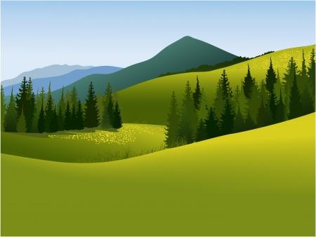 prato montagna: Paesaggio di montagna Vettoriali