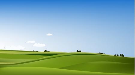 meadow: Rural landscape