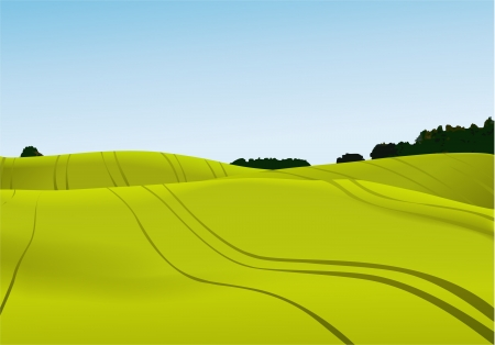panorama view: Rural landscape