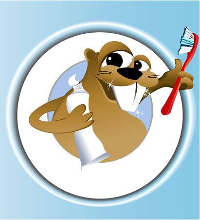castor: Beaver limpieza de los dientes