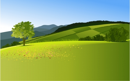 Rural landscape with mountains Stock Vector - 17188464