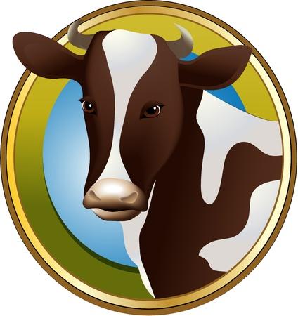 Farm cow Stock Vector - 17694921