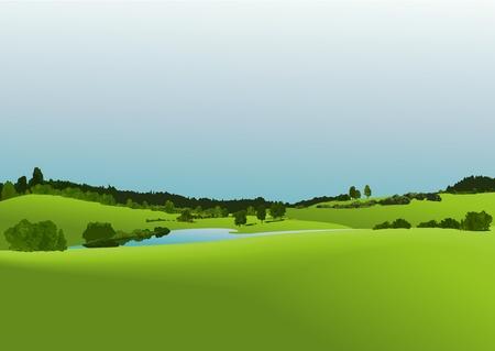 green fields: Rural landscape with green fields