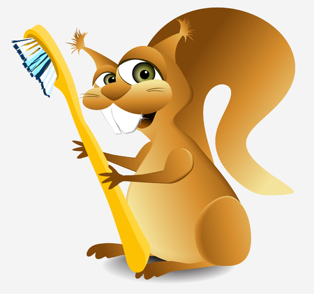 Dental squirrel Vector