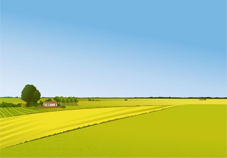 paisaje rural: paisaje rural Vectores