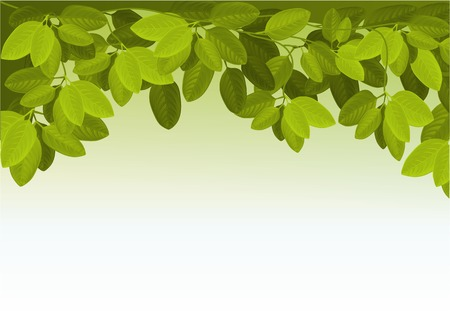 ivy: Nature background with ivy leaves Illustration
