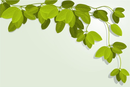 Nature background with ivy leaves Illustration
