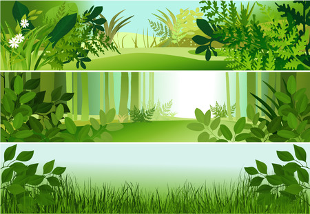 foliage  natural: Three forest banners Illustration