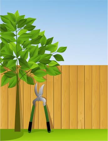 Tuin schaar bij het hek