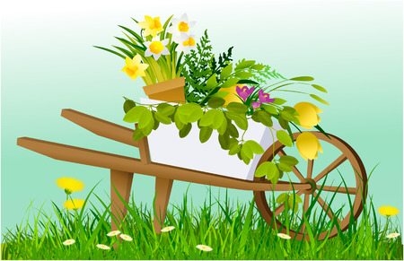 Nature spring background with wheelbarrow and garden plants