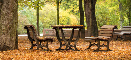 Autumn Park Benches and Table with many leafs