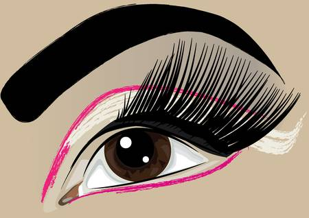 Women make-up brown eye Stock Vector - 9217899