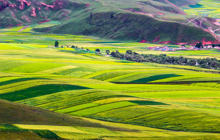 Landscape scenery view of a grassland in Qinghai Province, China Stock fotó