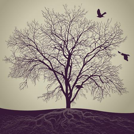 vector tree photo