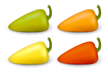 Realistic pepper. Vector illustration contains gradient mesh.