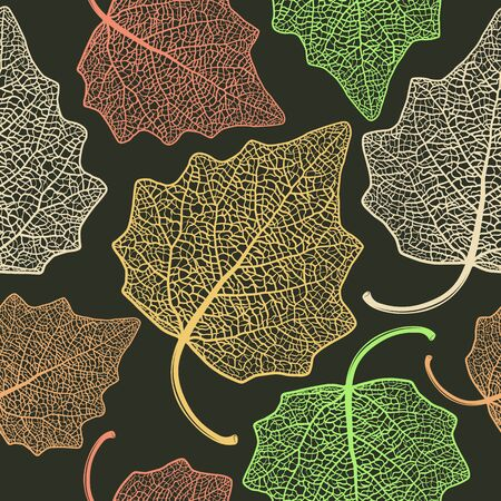 lombardy: Vector seamless pattern with skeletonized poplar leaves.